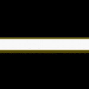 25350700